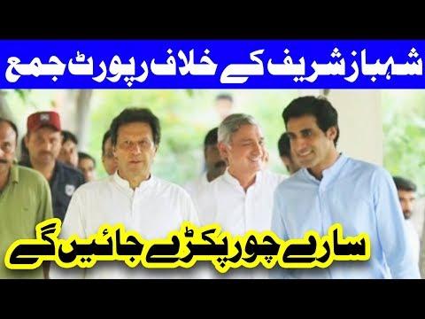 Shahbaz Sharif Ka Khilaf Report Jama Krwaye Gaye - Headlines and Bulletin - 09:00 PM - 29 July 2017