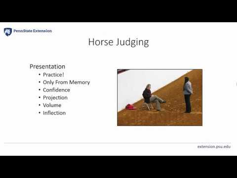 4 Part 1 Oral Reasons Horse Judging Pa 4 H Equine Knowledge
