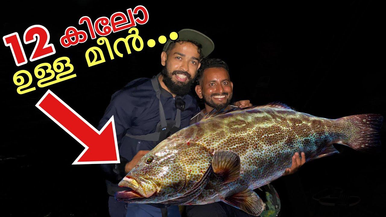 ദൈവമേ....രാത്രിയിൽ ചൂണ്ടയിൽ പിടിച്ച മീനിനെ കണ്ടോ??? | Fishing For Gaint Fishes | Grouper