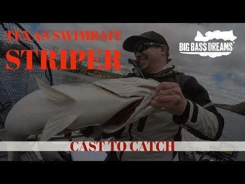 24lb Striper Lake Austin Cast To Catch To Scale
