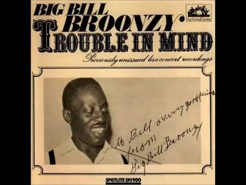 Big Bill Broonzy - Live Recordings