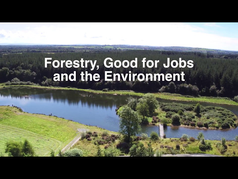 Dept of Agriculture, Food and the Marine - Forestry