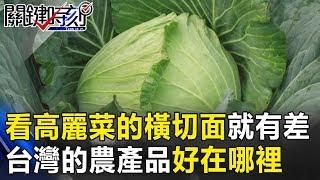 光看高麗菜的橫切面就有差 台灣的農產品好在哪裡! 關鍵時刻20181206-4 林佳新 黃暐瀚 林筱淇 許智傑 阿宏
