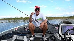 Late Fall Early Winter Bass Fishing Tactics for Florida Lakes