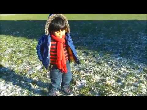 Ayaz roaming around downtown harbor at Victoria, BC