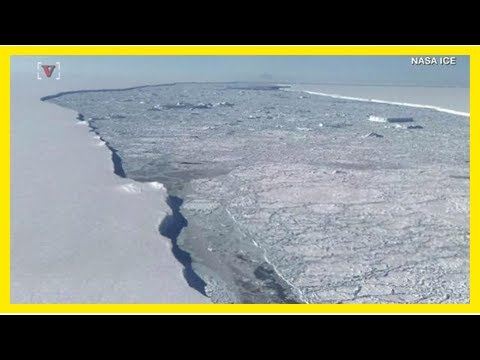 News-the massive Antarctic ice shelf the size of delaware slowly on the move as scientists have up-