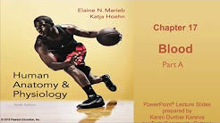 Anatomy and Physiology Chapter 17 Part A Lecture: Blood