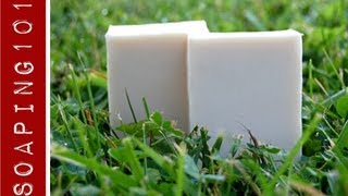 How to Make Insect Repellent Soap {with essential oils}  S2W19