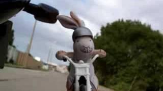 Biker Hare