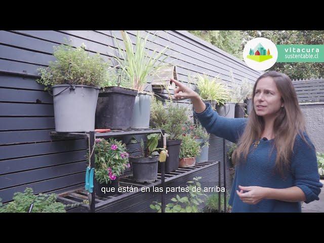 Tu Cocina Sustentable