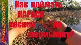 видео Ловля карася весной на поплавочную удочку и мормышку
