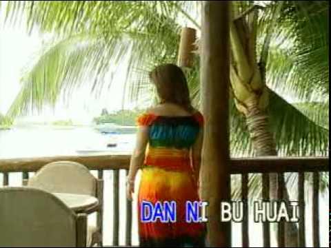 Videoke - CAN'T HELP FALLING IN LOVE by: F4