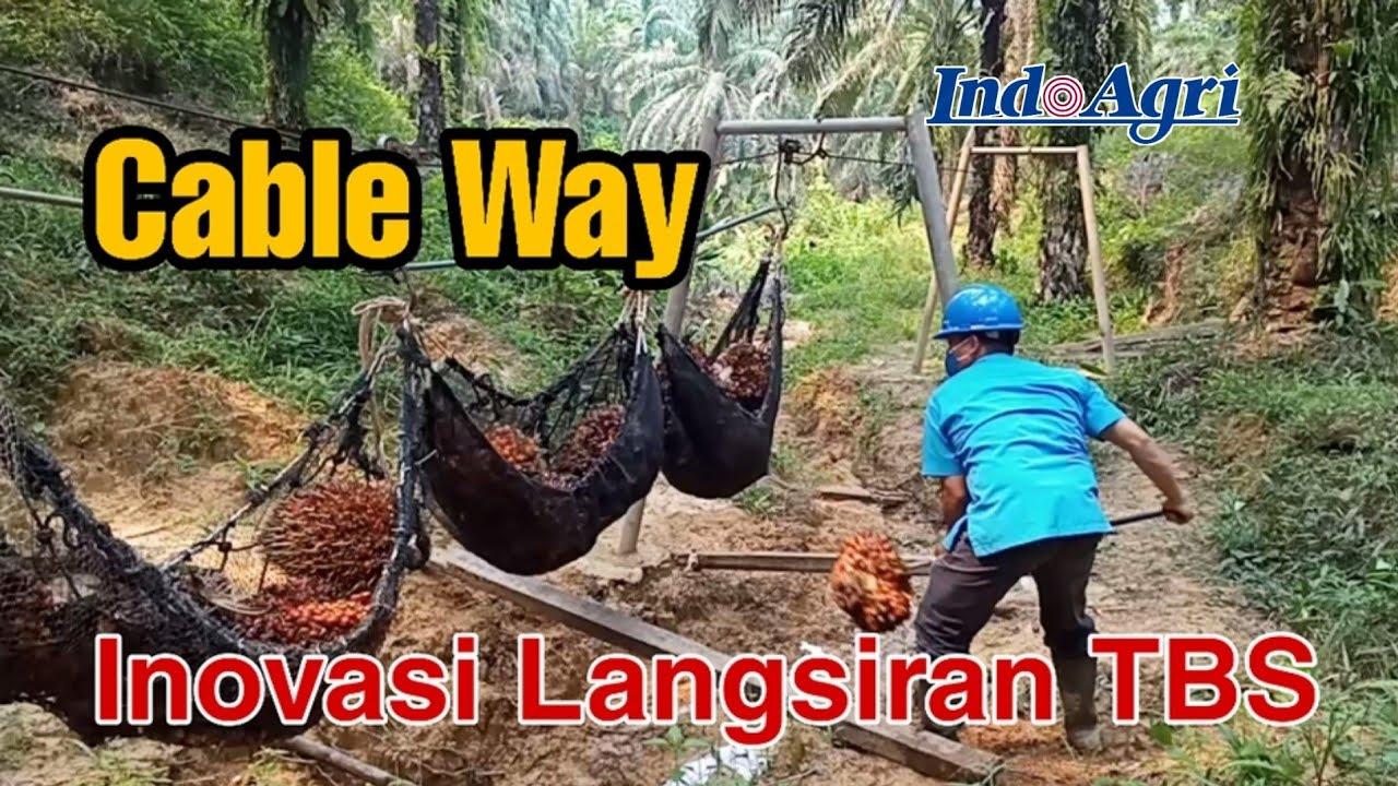 Download Cable Way Inovasi Langsiran TBS Pada Topografi Berbukit di Kebun Sawit