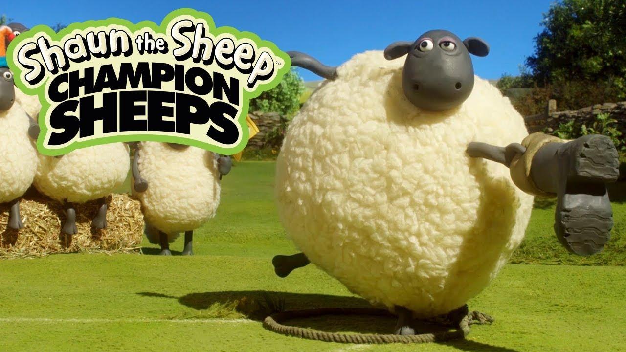Ném búa | Championsheeps | Những Chú Cừu Thông Minh [Shaun the Sheep]