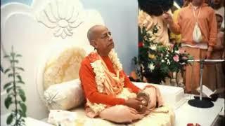 Prabhupada 0479 जब तुम अपनी वास्तविक स्थितिको समझते हो, फिर तुम्हारे कार्य वास्तव में शुरू होते हैं