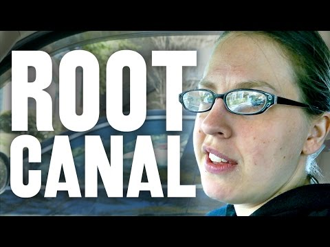 Root Canal • 3.29.17
