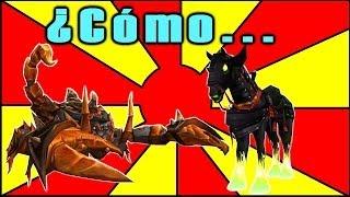 ¿Cómo... Conseguir el escorpión de ámbar? + Bonustrack Ep. #047