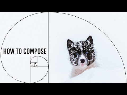 4-easy-steps-to-improve-your-photo-composition!