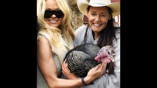 Pamela Anderson At The Gentle Barn For Thanksgiving