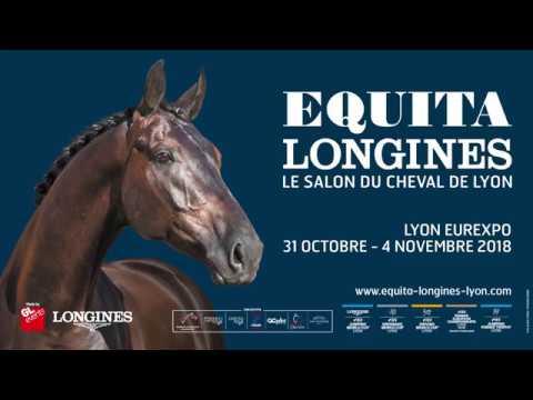 Salon Du Cheval Lyon