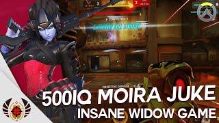 500 IQ Moira Juke - Insane Widow Game