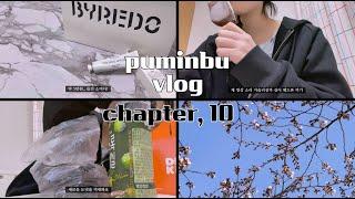 [puminbu vlog] 철이 없었죠,, 최애 생일을…