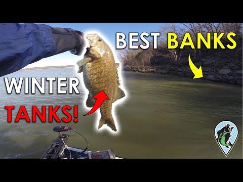 Finding Big Winter Bass In 4 Hours!   Lake Tenkiller Practice Day December 11, 2019
