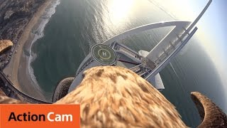 Flying over Dubai's Burj Al Arab   The Eagle POV   Action Cam   Sony