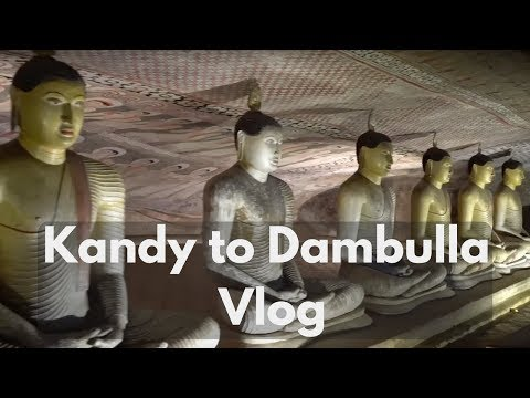 🇱🇰KANDY TO DAMBULLA VLOG 🇱🇰 | Travel better in Sri Lanka!