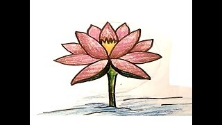 How To Draw A Waterlily ( শাপলা ) Easily Step By Step !! Easy Color Drawing Idea !!