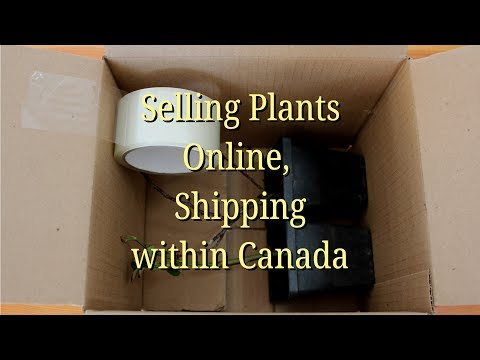 Selling Plants Online, Shipping Within Canada