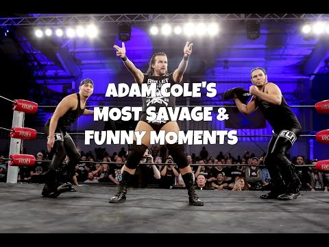 Adam Coles Most Savage & Funny Moments