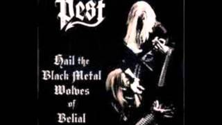 Pest (Fin)-Hail the black metal wolves of Belial-(2003 full album)