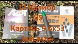 МЕРТВОРОЖДЕННЫЕ ПАТРОНЫ (Картечь) 9.6х53 ланкастер VS 12калибр