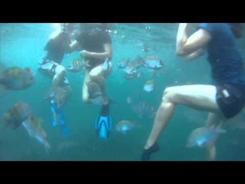 Snorkeling Los Arcos, Puerto Vallarta, Mexico