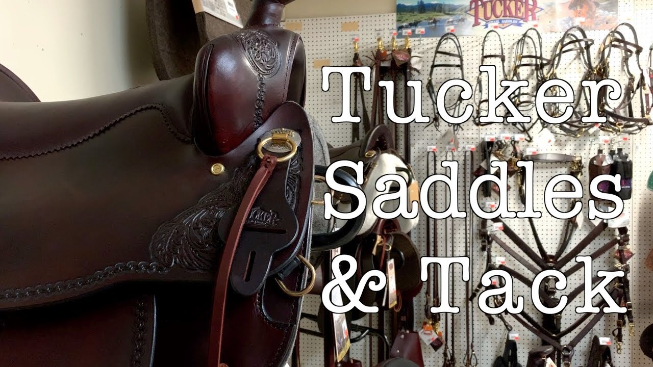 Tucker Saddles and Tack Available Now at Jeffers! // Tucker Saddles Showoff