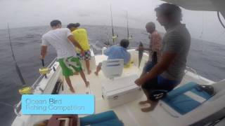 Ocean Bird Seychelles La Digue Fishing Competition 2015