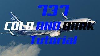 X-Plane 11|Cold and dark/FMC tutorial|Zibo 737-800