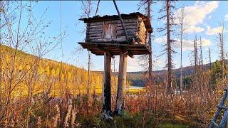В ТАЙГУ НА НЕДЕЛЮ день 4 Атака на МЫШЬ крупным планом Рыбалка на таёжной реке в Сибири Сплав