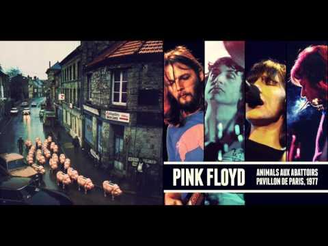 1977-02-25 Animals aux Abattoirs - Pink Floyd - Paris, France