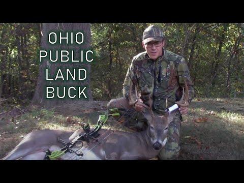 Ohio Public Land Hunt 2019 ACORN BUCK