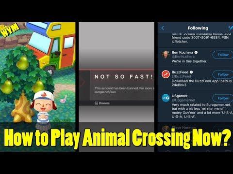 Bungie Mass Bans Destiny 2 Players, Play Animal Crossing On IOS Now, Nintendo Follows Buzzfeed