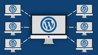 How to Create WordPress Multisite Network - Urdu-Hindi Tutorial