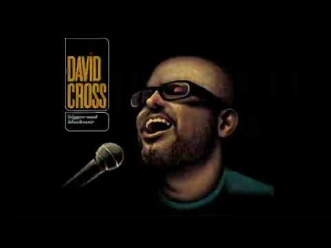 David Cross - I Can't Get Beer In Me