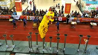 Barongsai/ Lion Dance Tonggak Indonesia National Competition