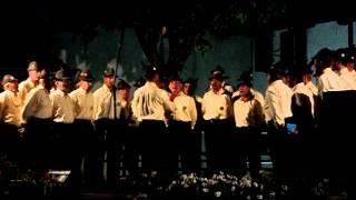 """Gruppo Ana di Codroipo - """"Le Stellette"""" @ Goricizza (Ud, 18 giugno 2011)"""