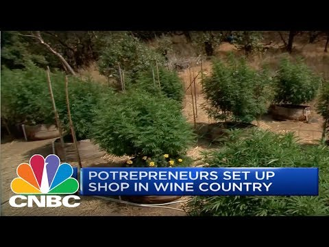 California's Battle On Wine And Weed | CNBC
