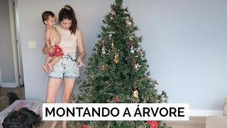 MONTANDO A ÁRVORE DE NATAL | Vlog #100 | Lia Camargo
