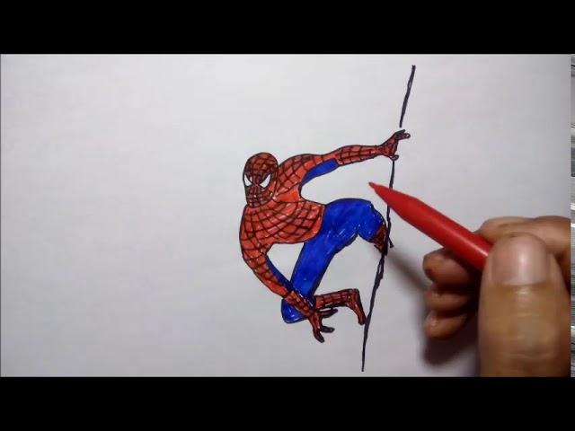 KEREN..! Trik Menggambar Spider Man Langsung  Dengan Spidol #1