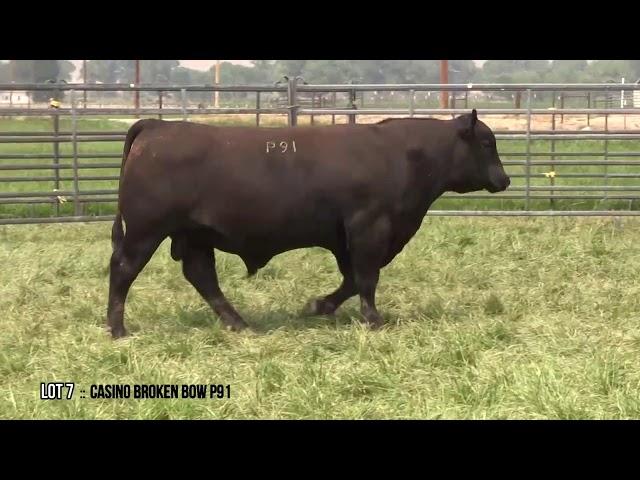 Dal Porto Livestock and Rancho Casino Lot 7